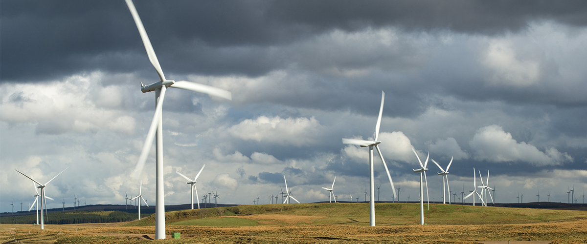 A picture of a wind farm
