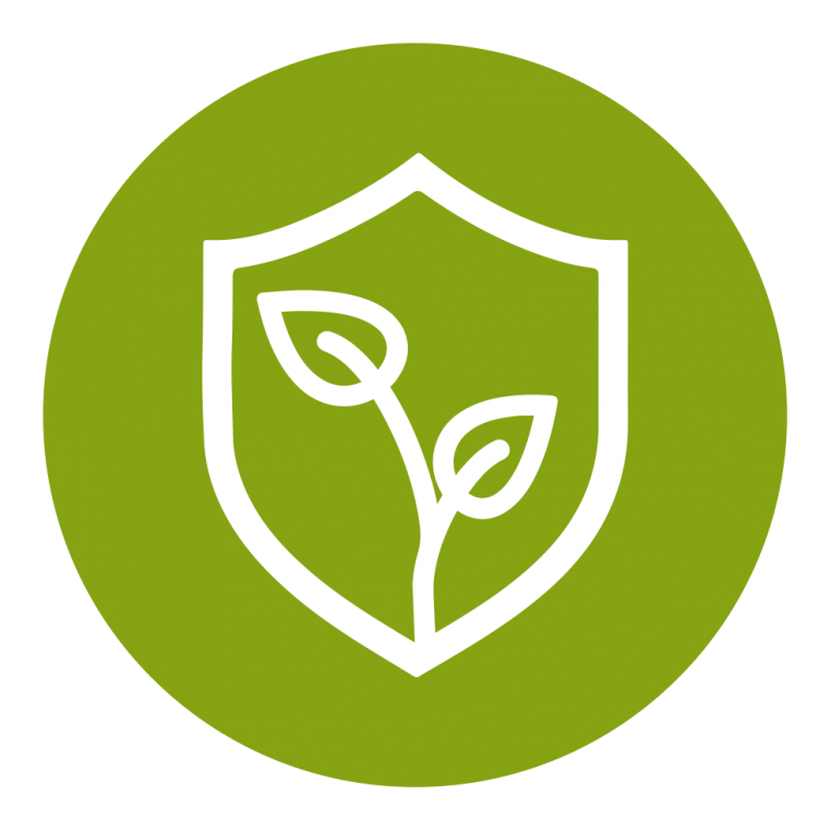 Green icon with leaves symobolising safety and environmental impact