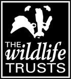 A logo that reads the wildlife trusts