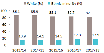 A chart to show workforce Ethnicity
