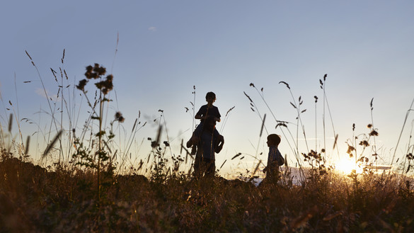 Family walking across meadow in the sunset