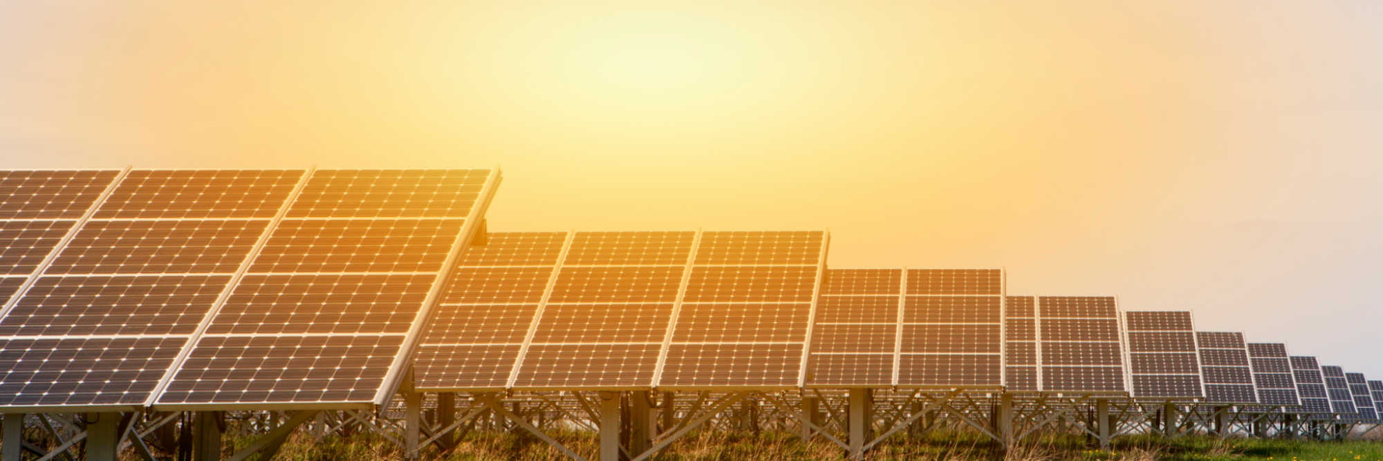 A field of solar panels with a setting sun in the background - Vision and Strategy